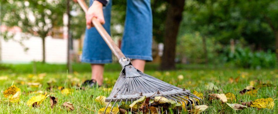 Gartenarbeiten im Oktober: Der Herbst ruft