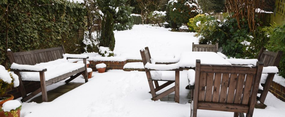 Gartenarbeit im Dezember: Das ist zum Jahresende zu tun
