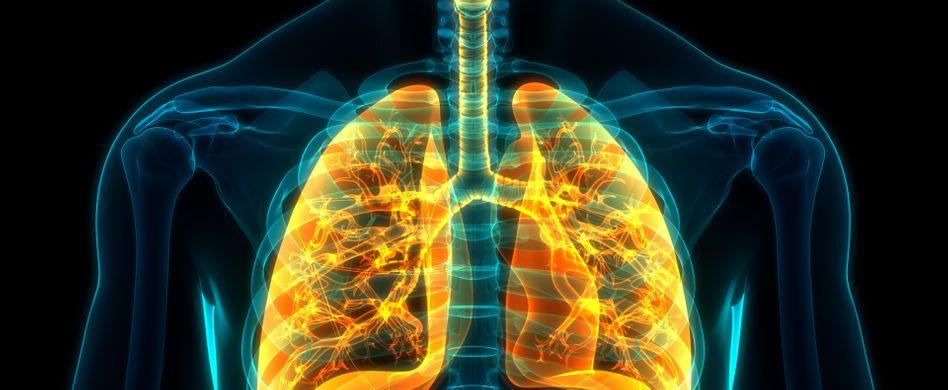 Lunge Aufnahme Mensch