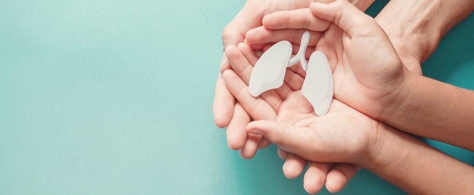 zwei menschen halten kleine weiße plastiklunge in den händen