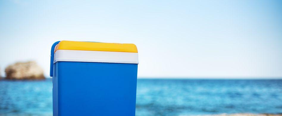 Kühlboxen-Vergleich: WelcheKühlbox ist die beste für mich?